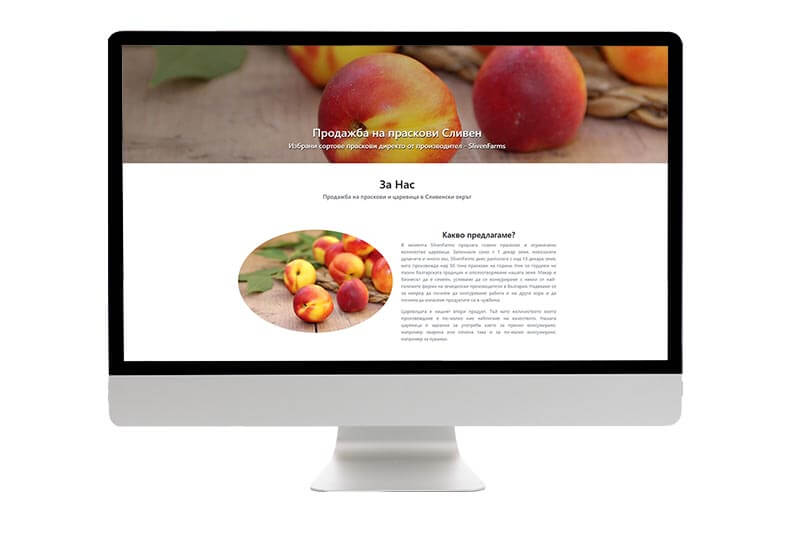 website design Malta